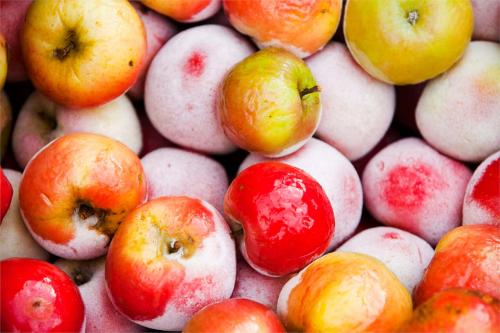 Заморожуємо на зиму: яблука