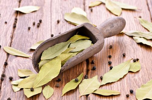 10 неймовірних властивостей лаврового листя